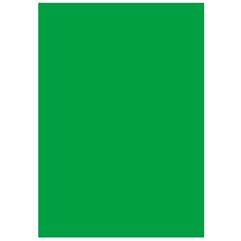 Psykofyysinen psykoterapia ry